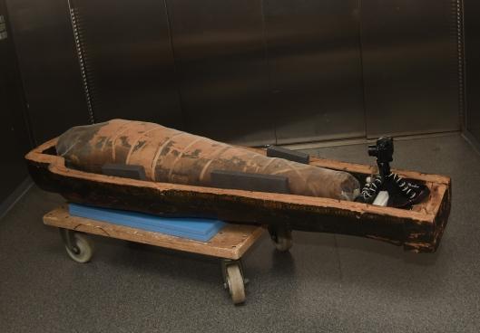 מומיה. צילום עופרית רוזנברג. מוזיאון ישראל ירושלים 3